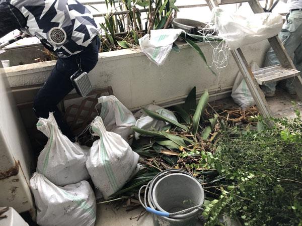 沖縄県那覇市Y様・花壇の土の撤去。